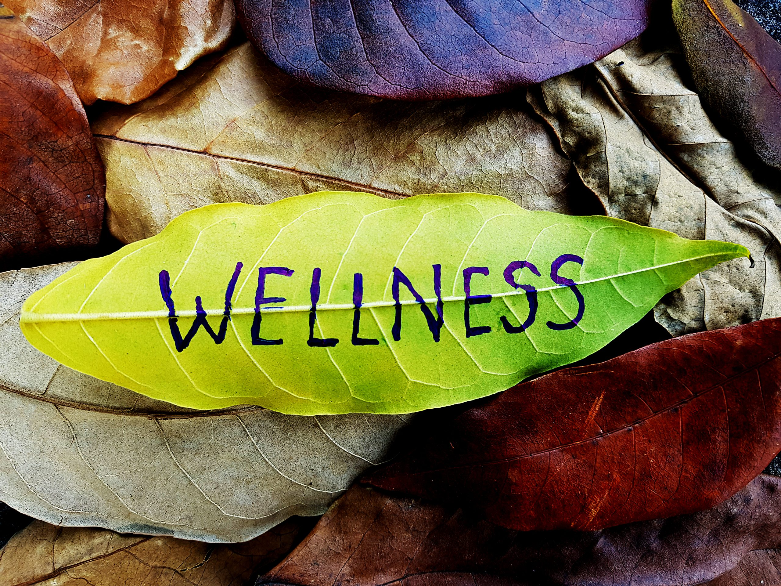 Wellness Leaf